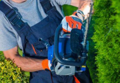 Pielegnacja terenów zieleni -oferta sezonowa
